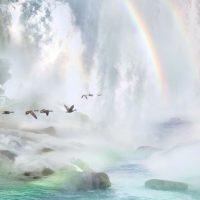 Утки у водопада