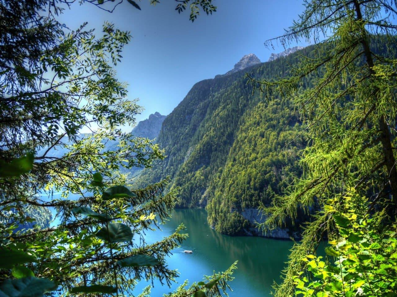 Баварский лес